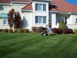 Lawn Care Services from a local lawn care company, Turf Solutions 12024 S Easley Rd Lees Summit MO 64086