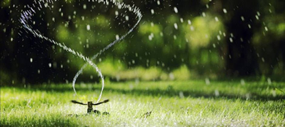 Call the lawn care professionals at Turf Solutions 12024 S Easley Rd Lees Summit MO 64086 to advise you about how to save your grass during a drought.